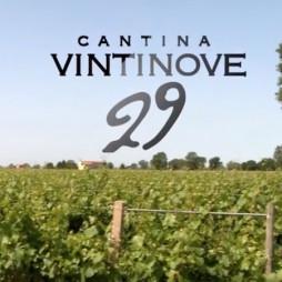 video-cantina-29
